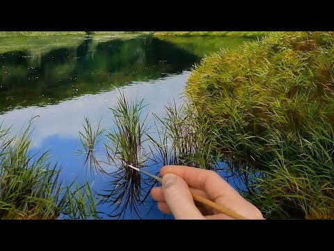 #126 Using fine brush strokes to paint reeds | Oil Painting Lesson