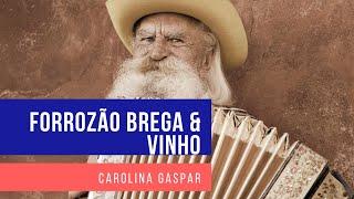 Efeitos (Cristiano Araújo) - Forrozão Brega &Vinho