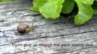 Feel Good Inspirational Video - The Don't Quit Poem.flv