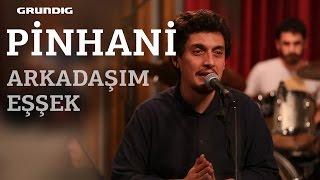 Pinhani - Arkadaşım Eşşek [Barış Manço Cover] / #akustikhane #sesiniaç