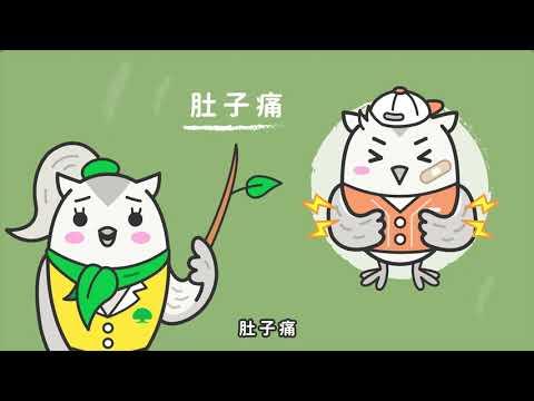 森林小學堂(拒毒篇) - YouTube