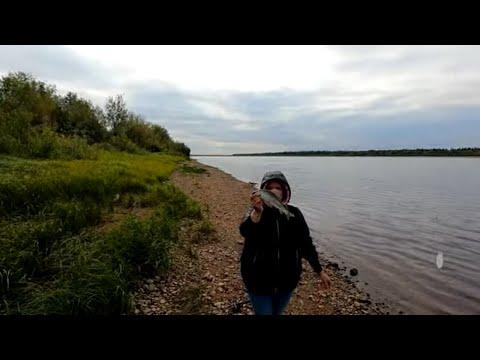 Рыбалка на хариуса / Как ловить хариуса на бомбарду / Ловля хариуса на мушки