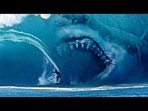 10 INCREDIBLE Facts About The Megalodon Shark