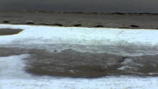 Ice on the Sound