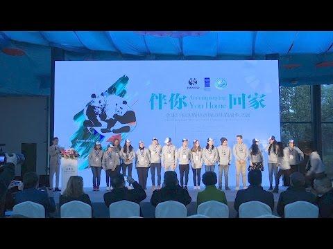 Les champions pour les Objectifs mondiaux rencontrent les pandas ambassadeurs du PNUD