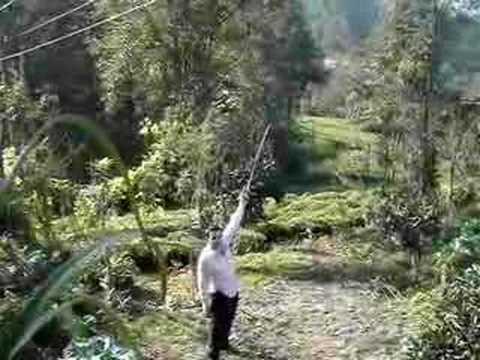 silah rize karadeniz 14 lü taşpınar köyü