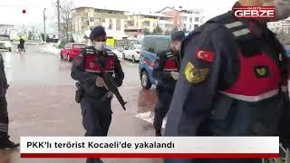 PKK'lı terörist Kocaeli'de yakalandı!