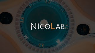 Nicolab - Electro Harmonix B9 (Bass)
