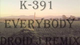 [Build] K-391 - Everybody (Droid J Remix)