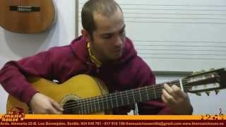 La Guitarra Clásica - The Music House