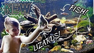 New Fish! Community Lizard Tank! Frogs, Salamanders, and More...