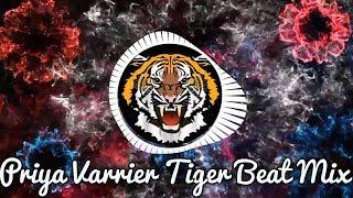 Priya Varrier Tiger High Beat Mix | Oru Adaar Love Dance Beat | GHK