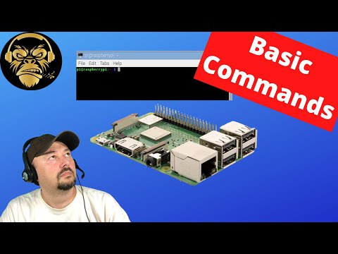 Basic Raspberry Pi Linux Commands - TheSmokinApe