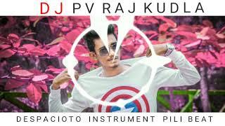 Despacito Tiger Beat With DJ PV RAJ KUDLA