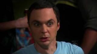 Big Bang Theory - WHEATON