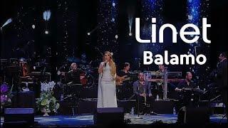 Linet - Balamo (Harbiye Açıkhava 01.08.2017)