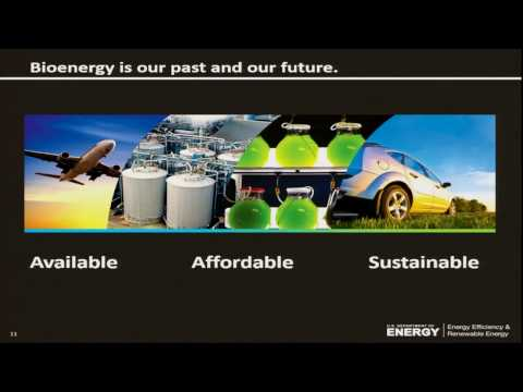 EnergyTalks- Bioenergy: Our Past, Our Future