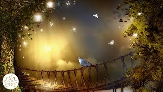 Soft Calm Music: Meditation Music, Peaceful Music, Stress Relief Music (Light of Hope)