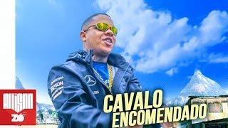MC Magal - Cavalo Encomendado (Áudio Oficial) DJ Russo e DJ CK