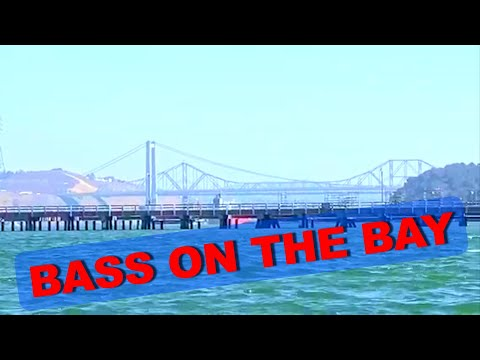 Bass on the Bay