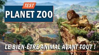 Vidéo-Test : PLANET ZOO, le bien-être animal avant tout !   TEST