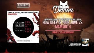 How Deep Is Your Love vs. Mammoth (Ummet Ozcan Smashup) (Tomorrowland Brasil 2016)