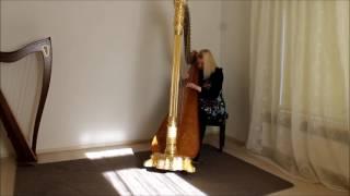 Harpist Regina Ederveen plays Amar Pelos Dois on harp arpa