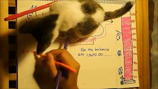 Cat Cafe Business Proposal - Gone, Gone, Gone by Phillip Phillips