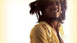 Bob Marley Fussing And Fighting