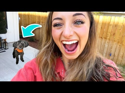 Little ASH Surprises Brooklyn and Bailey!
