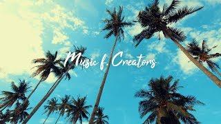 Palm Trees — MBB