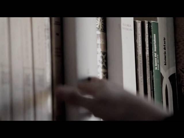 Pajaro Sunrise - Old Goodbyes (by Juan Aragonés) videoclip