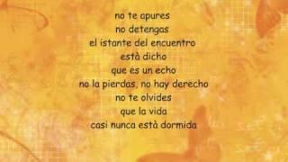 Flores Amarillas - Floricienta
