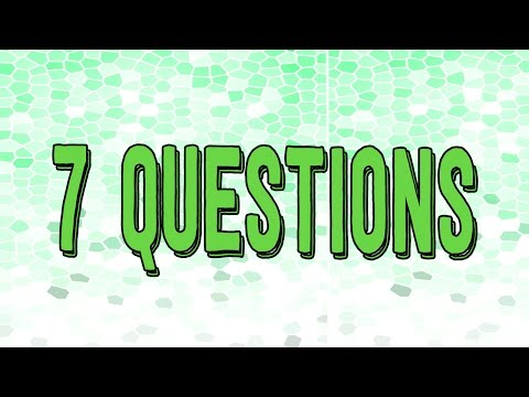 7 Questions about Studying Philosophy