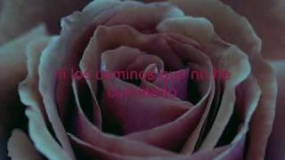 Miriam Hernandez - Tonto (lyrics)