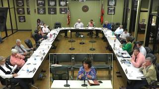 Community Services Committee Meeting - 3/15/2019