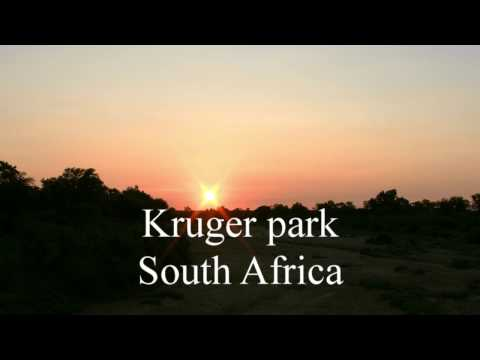 Kruger park South Africa (my first encounter)