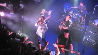 """Viralata Punk feat. """" Carocho """" - com participação de Zorb - Dalai Lume"""