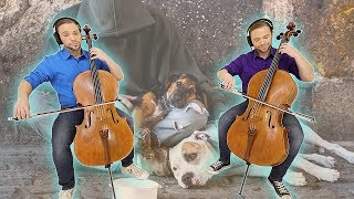 AS THE DEER Cello Cover | Sacred Sundays