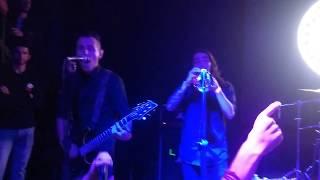 Los Radicales - Mojiganga (live 20 años estúpidas guerras Pogotá)