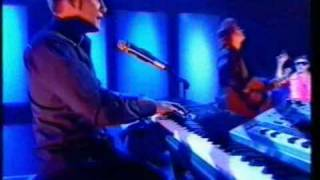 David Gray - Please Forgive Me (Live)