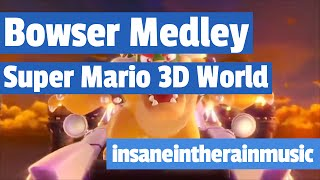Bowser Medley - Super Mario 3D World (ft. TheLonelySoundboard) | Jazz Cover