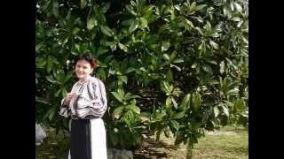 Claudia Danca - Roata, roata si iar roata  (Cover)