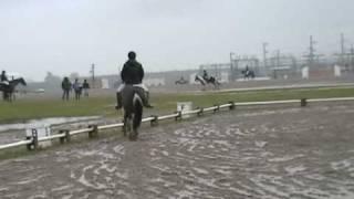 Ram Tap Winter Horse Trials - Dressage