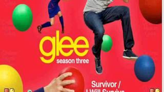 Glee cast - I'm a survivor/survivor