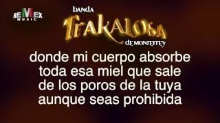 Un Par de Cerdos  Banda la Trakalosa (Karaoke) Estreno 2013