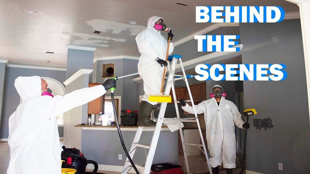 Best Hazardous Cleaning Company Streamwood IL