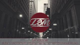 SkyBlew - Blew's Vacation In The Big Stinkin' City (Prod. U'Nique Music)