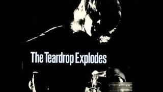 The Teardrop Explodes - Reward