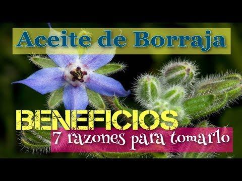 7 beneficios de tomar Aceite de Borraja